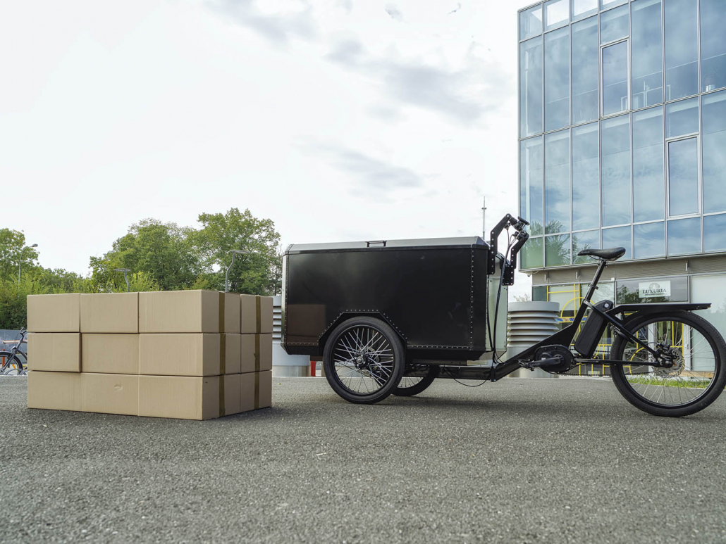 Electric Cargo Bike TR01 load capacity